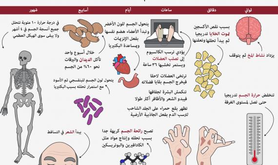 صورة ماذا يحدث بعد الموت , ماذا يحدث للجسد بعد الموت 3122