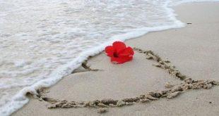 كلام حب قصير للحبيب , اجمل كلام حب عن الحبيب