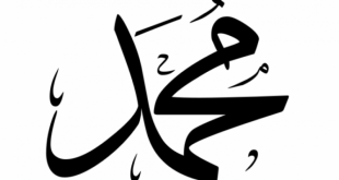 اجمل المعاني التي يحملها اسم محمد,صور اسم محمد