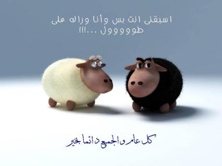 صورة أجمل التهاني لعيد الأضحي المبارك , تهنئة عيد الاضحى 990 5