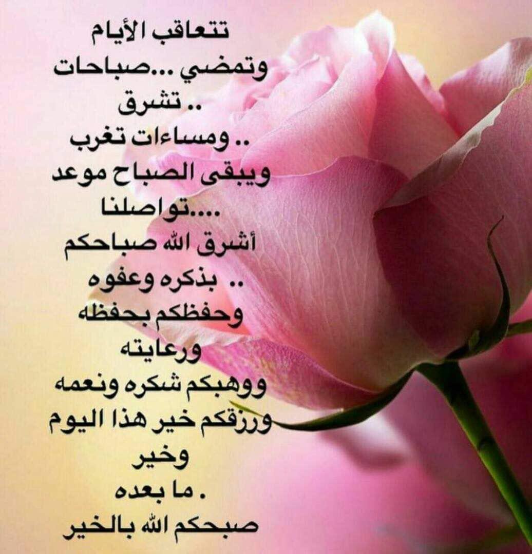 صورة كلمات صباحية رائعة 2737 8