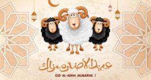 صور للعيد الاضحى